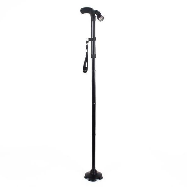 walking stick standing